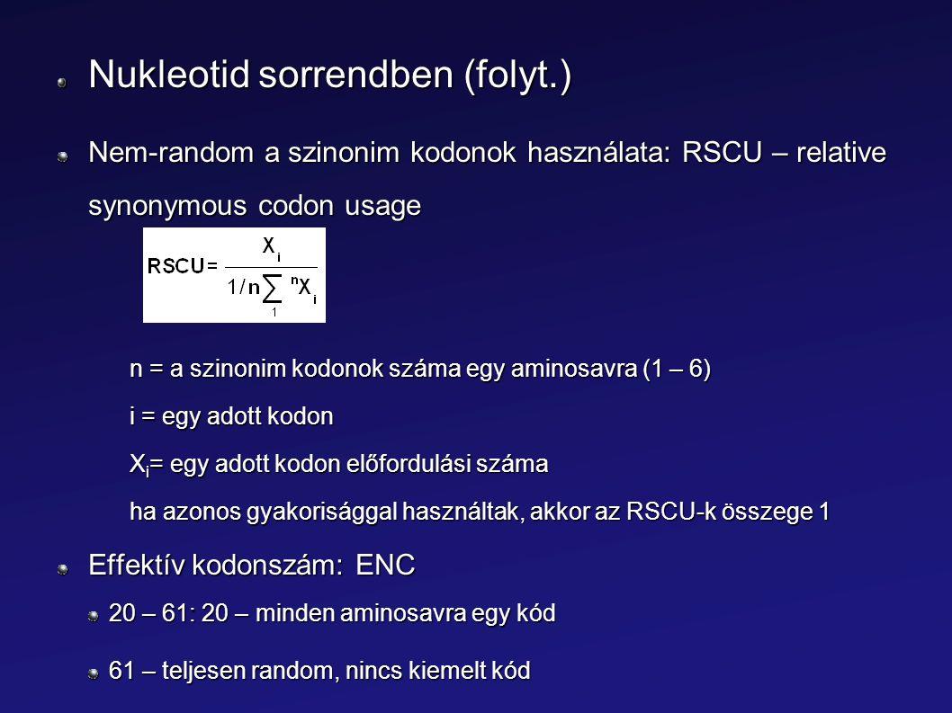 Nukleotid sorrendben (folyt.) Nem-random a szinonim kodonok használata: RSCU – relative synonymous codon usage n = a szinonim kodonok száma egy aminos
