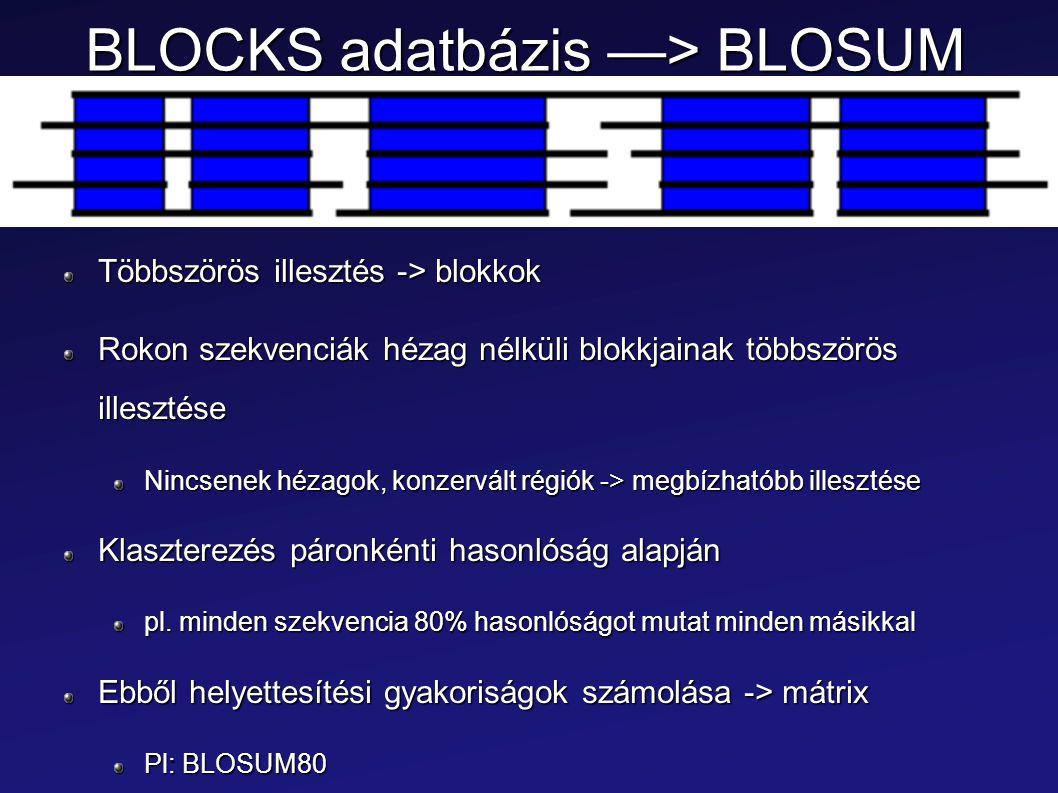 BLOCKS adatbázis —> BLOSUM Többszörös illesztés -> blokkok Rokon szekvenciák hézag nélküli blokkjainak többszörös illesztése Nincsenek hézagok, konzer