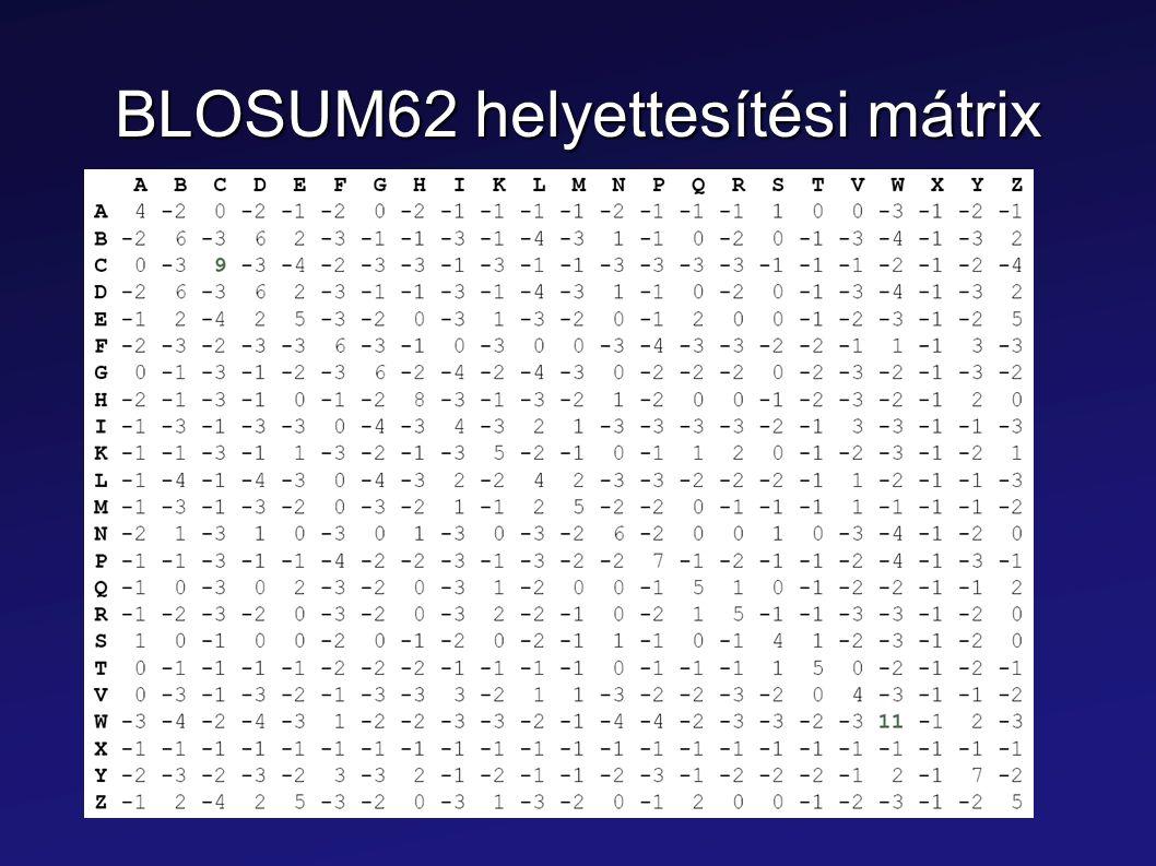 BLOSUM62 helyettesítési mátrix
