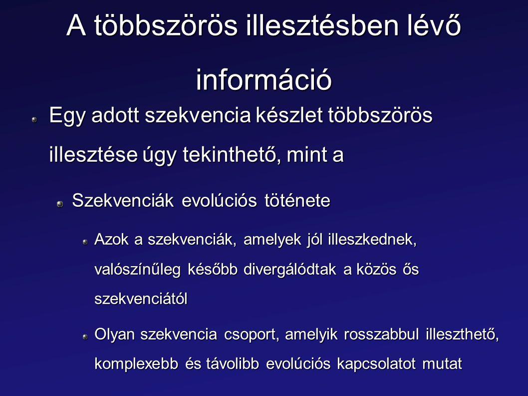 A többszörös illesztésben lévő információ Egy adott szekvencia készlet többszörös illesztése úgy tekinthető, mint a Szekvenciák evolúciós töténete Azo