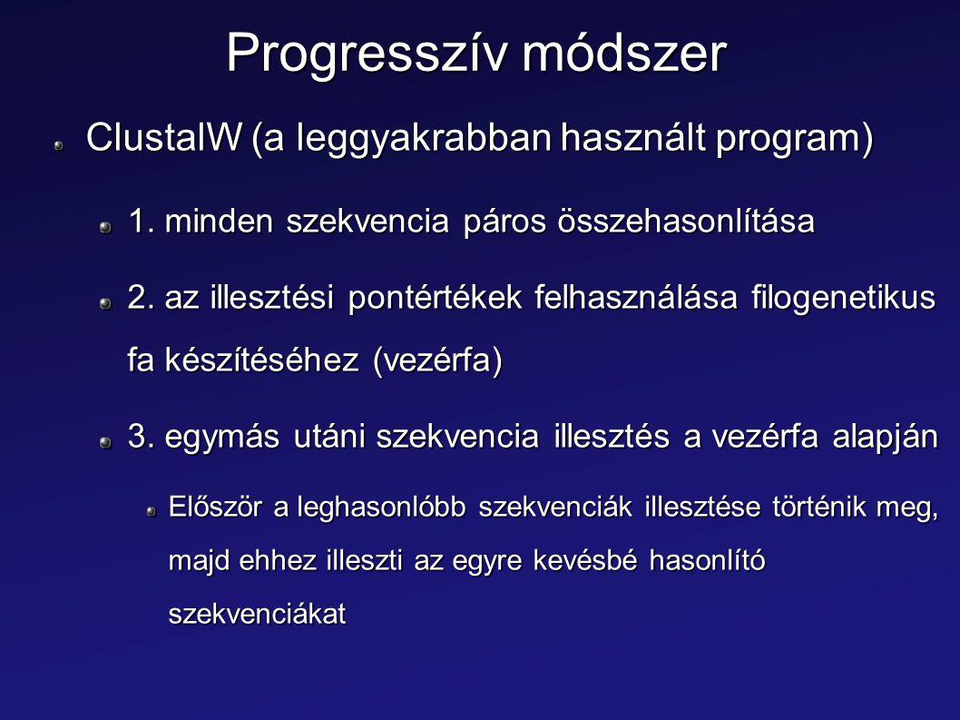 Progresszív módszer ClustalW (a leggyakrabban használt program) 1. minden szekvencia páros összehasonlítása 2. az illesztési pontértékek felhasználása