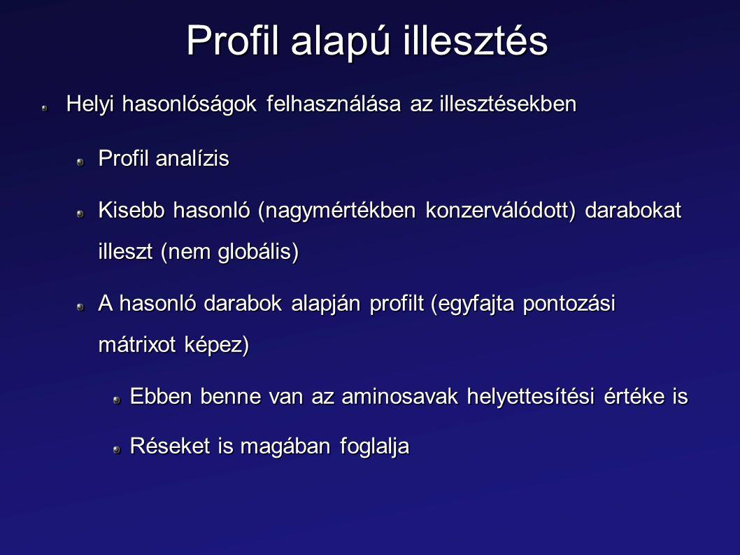 Profil alapú illesztés Helyi hasonlóságok felhasználása az illesztésekben Profil analízis Kisebb hasonló (nagymértékben konzerválódott) darabokat ille