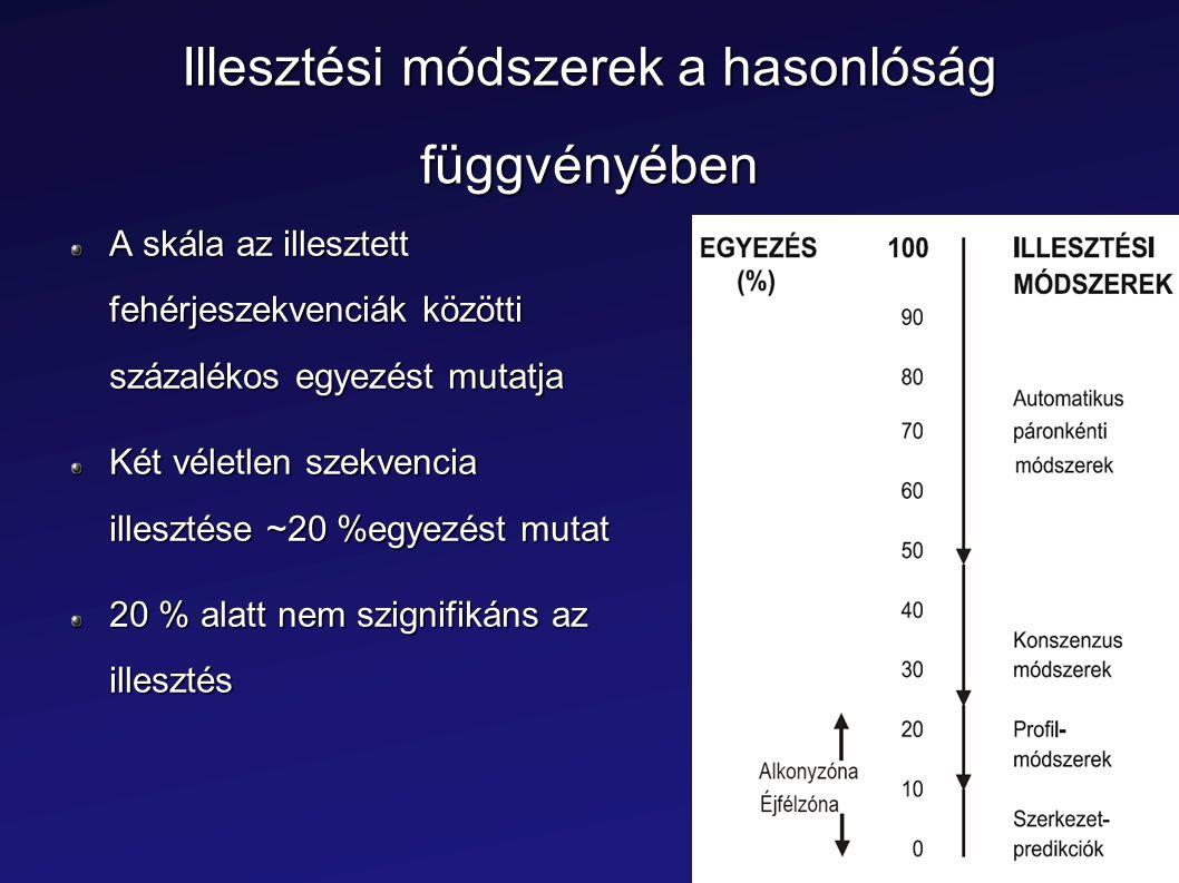 Illesztési módszerek a hasonlóság függvényében A skála az illesztett fehérjeszekvenciák közötti százalékos egyezést mutatja Két véletlen szekvencia il