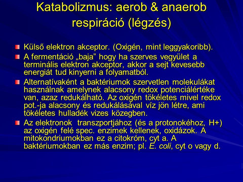 """Katabolizmus: aerob & anaerob respiráció (légzés) Külső elektron akceptor. (Oxigén, mint leggyakoribb). A fermentáció """"baja"""" hogy ha szerves vegyület"""