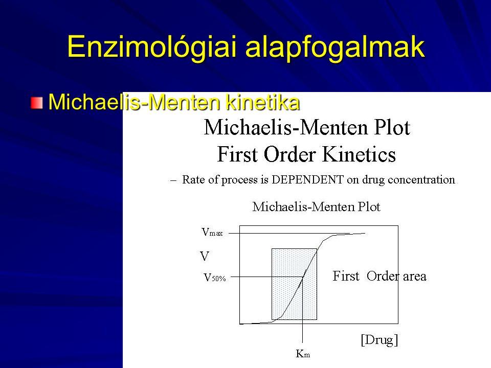 Enzimológiai alapfogalmak Michaelis-Menten kinetika