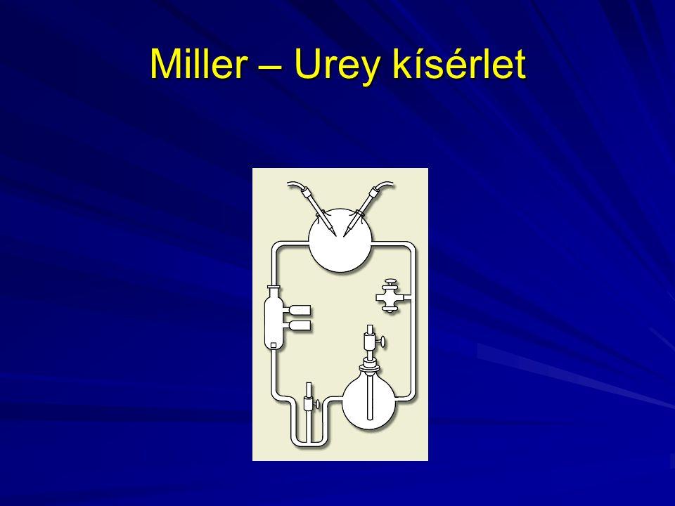 Miller – Urey kísérlet