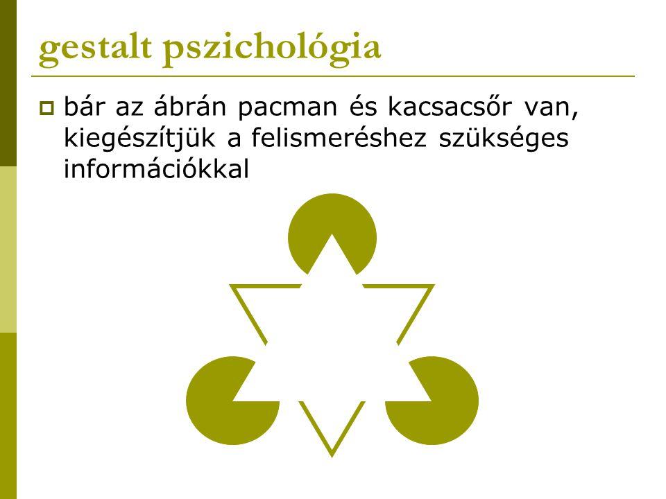 gestalt pszichológia  bár az ábrán pacman és kacsacsőr van, kiegészítjük a felismeréshez szükséges információkkal
