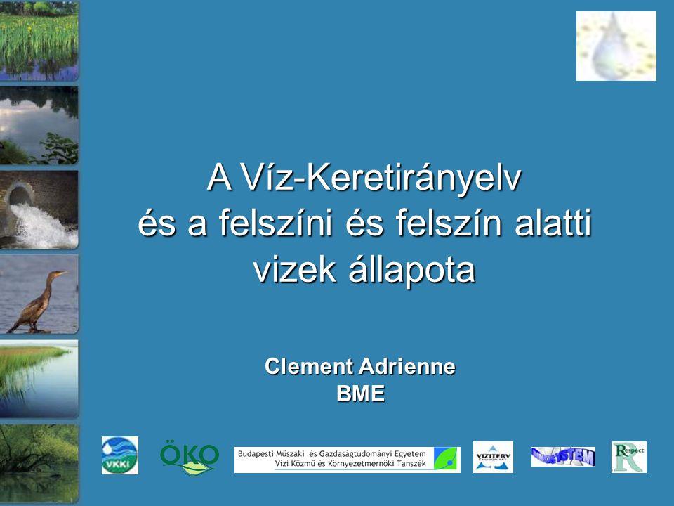 Clement Adrienne BME A Víz-Keretirányelv és a felszíni és felszín alatti vizek állapota