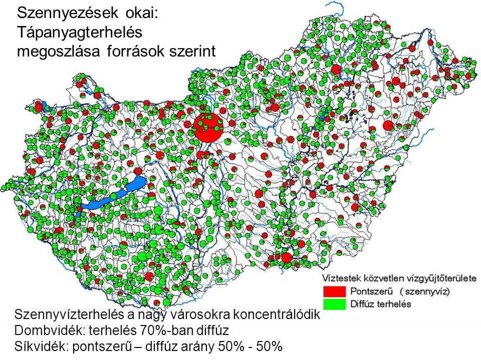 Szennyezések okai: Tápanyagterhelés megoszlása források szerint Szennyvízterhelés a nagy városokra koncentrálódik Dombvidék: terhelés 70%-ban diffúz Síkvidék: pontszerű – diffúz arány 50% - 50%