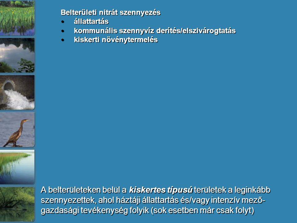 A belterületeken belül a kiskertes típusú területek a leginkább szennyezettek, ahol háztáji állattartás és/vagy intenzív mező- gazdasági tevékenység folyik (sok esetben már csak folyt) Belterületi nitrát szennyezés állattartás állattartás kommunális szennyvíz derítés/elszivárogtatás kommunális szennyvíz derítés/elszivárogtatás kiskerti növénytermelés kiskerti növénytermelés
