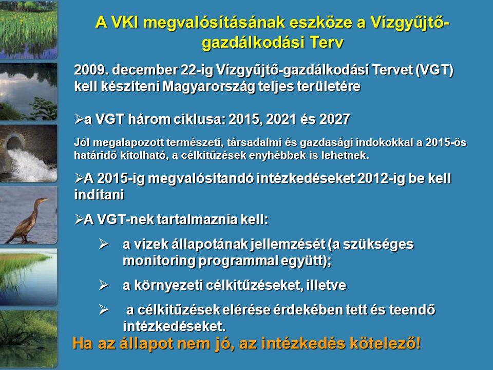 A VKI megvalósításának eszköze a Vízgyűjtő- gazdálkodási Terv 2009. december 22-ig Vízgyűjtő-gazdálkodási Tervet (VGT) kell készíteni Magyarország tel