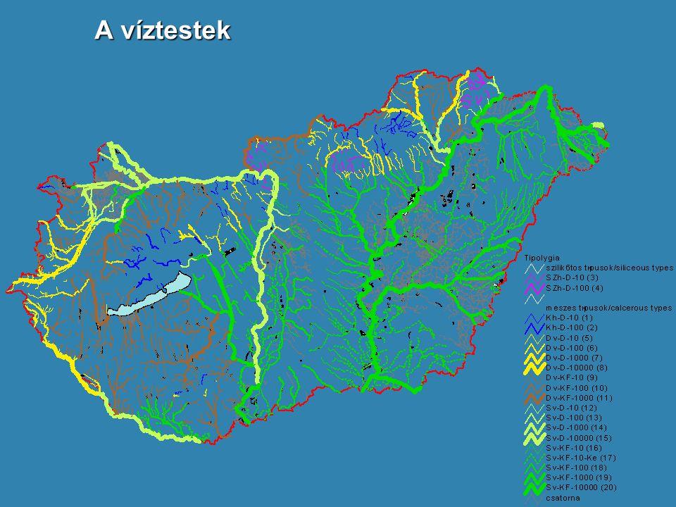  A vízfolyások közvetlen közelében szántóföldek találhatók, ahonnan - védőzónák hiányában - a tápanyag-felesleg visszatartás nélkül közvetlenül a mederbe jut.