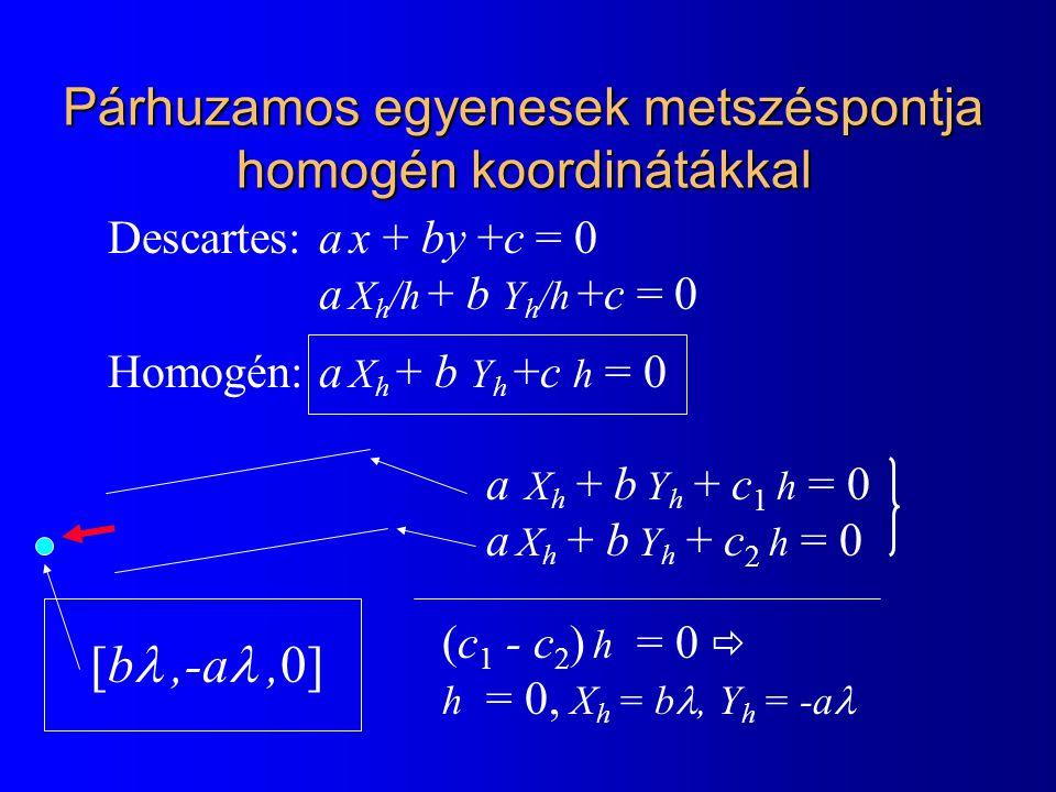 Descartes: a x + by +c = 0 a X h /h + b Y h /h +c = 0 Homogén:a X h + b Y h +c h = 0 a X h + b Y h + c 1 h = 0 a X h + b Y h + c 2 h = 0 (c 1 - c 2 )