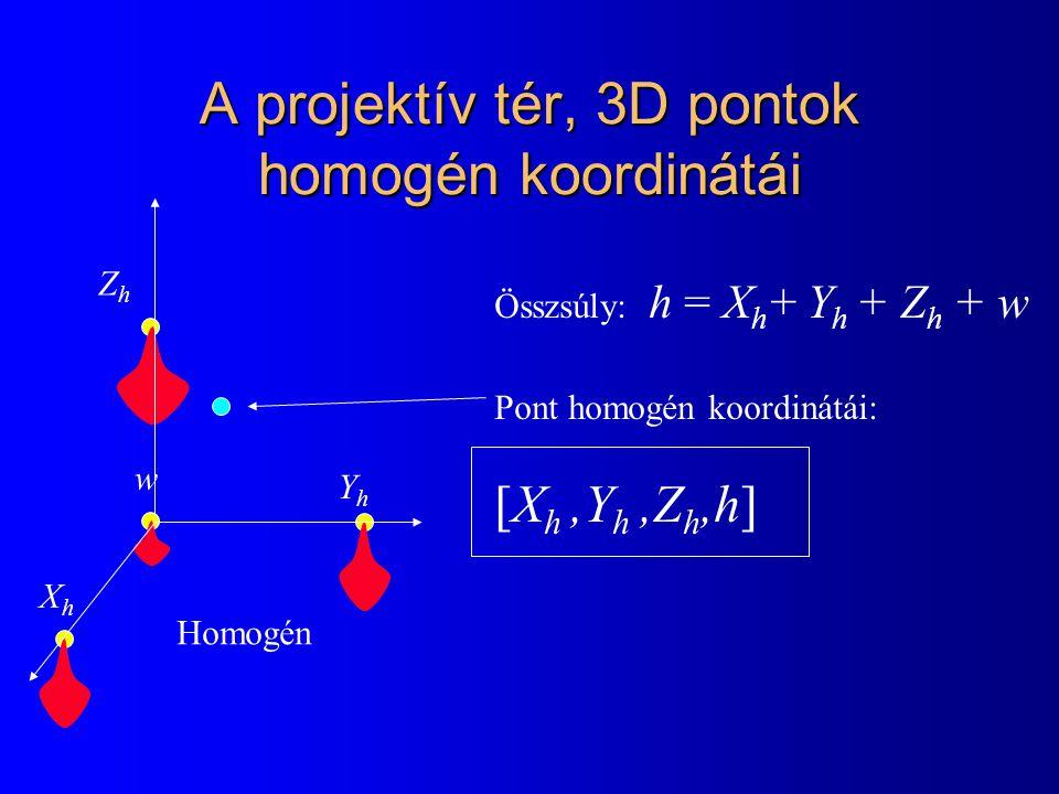 A projektív tér, 3D pontok homogén koordinátái YhYh ZhZh w Homogén Összsúly: h = X h + Y h + Z h + w Pont homogén koordinátái: [X h,Y h,Z h,h] XhXh