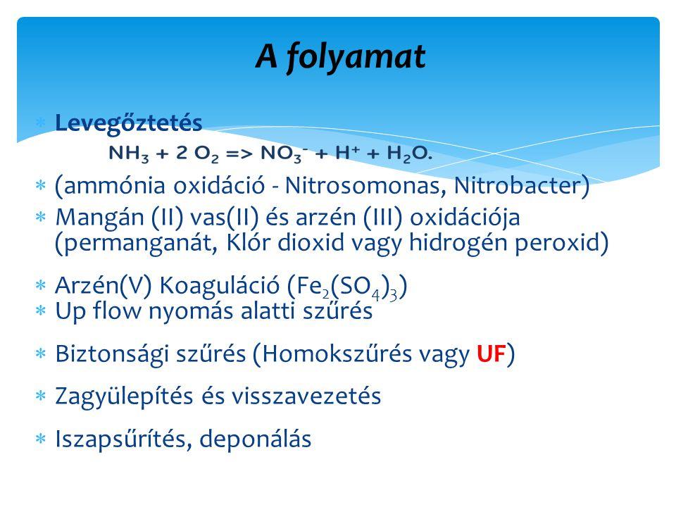 A folyamat  Levegőztetés  (ammónia oxidáció - Nitrosomonas, Nitrobacter)  Mangán (II) vas(II) és arzén (III) oxidációja (permanganát, Klór dioxid vagy hidrogén peroxid)  Arzén(V) Koaguláció (Fe 2 (SO 4 ) 3 )  Up flow nyomás alatti szűrés  Biztonsági szűrés (Homokszűrés vagy UF)  Zagyülepítés és visszavezetés  Iszapsűrítés, deponálás
