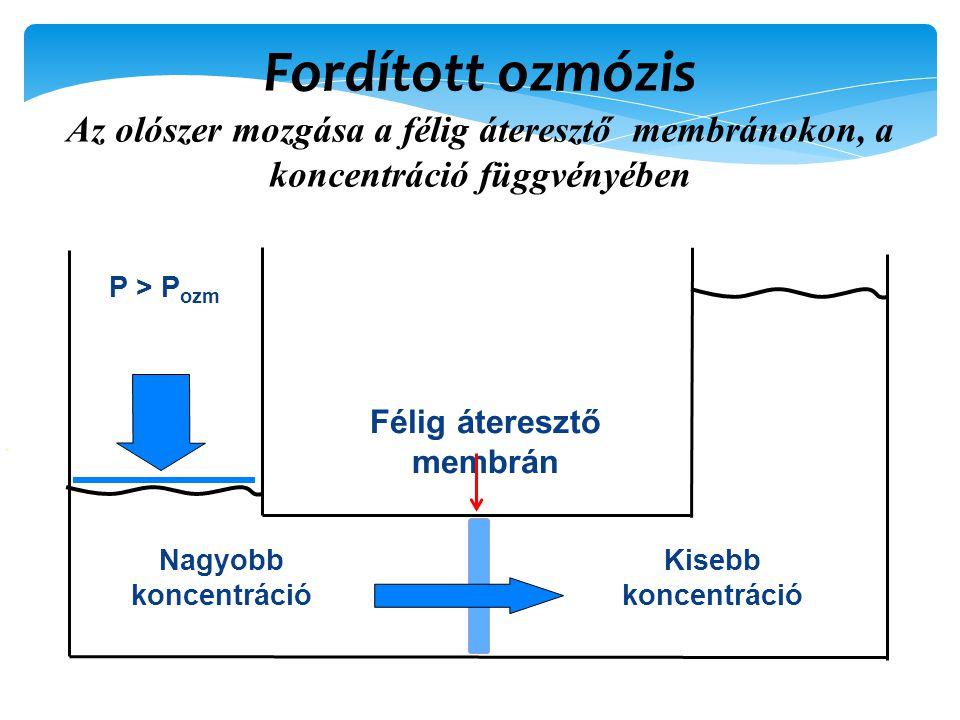 Fordított ozmózis Az olószer mozgása a félig áteresztő membránokon, a koncentráció függvényében Félig áteresztő membrán Nagyobb koncentráció Kisebb koncentráció P > P ozm