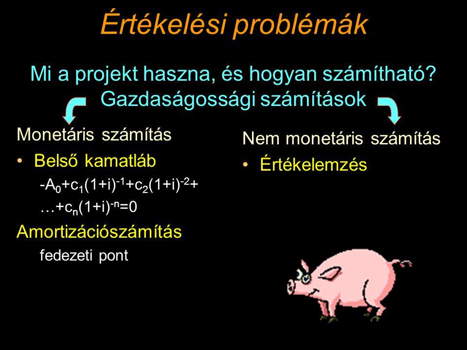 Értékelési problémák Monetáris számítás Belső kamatláb -A 0 +c 1 (1+i) -1 +c 2 (1+i) -2 + …+c n (1+i) -n =0 Amortizációszámítás fedezeti pont Nem monetáris számítás Értékelemzés Mi a projekt haszna, és hogyan számítható.