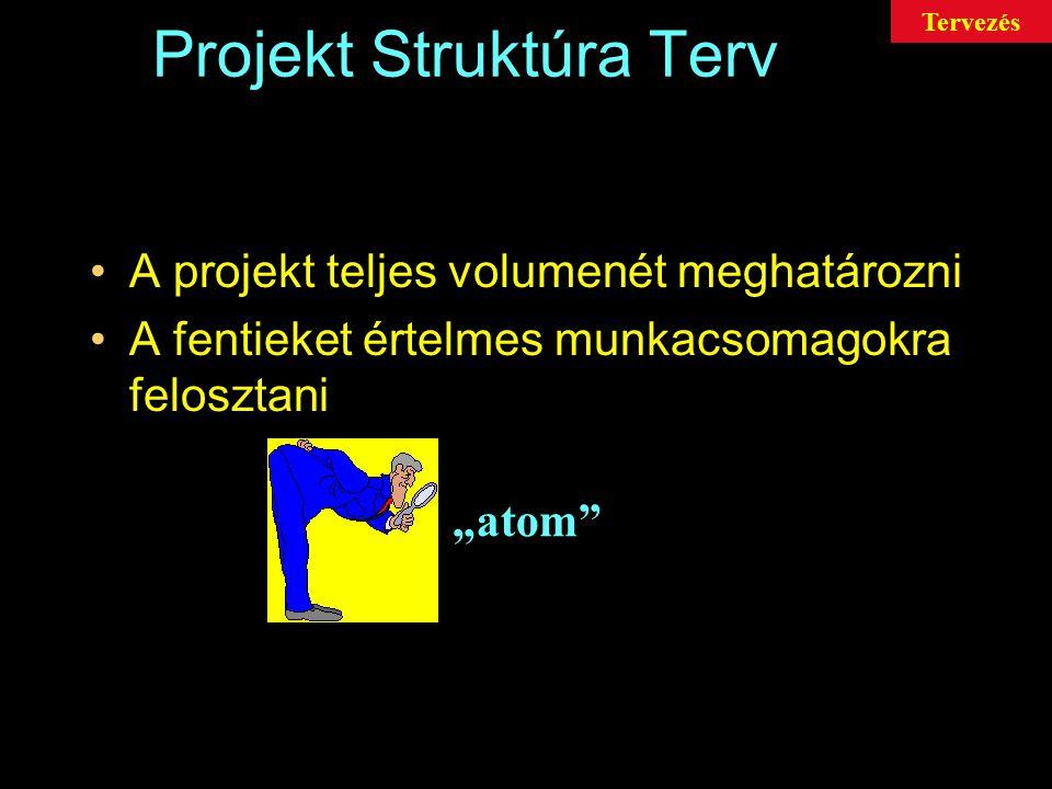 Projekt Struktúra Terv A PST (WBS) egy központi tervezési eszköz, melyből az összes többi terv levezethető Cél: A projektet teljes terjedelmében átlátni A projekt befejezéséhez szükséges összes feladatot összegyűjteni Tervezés