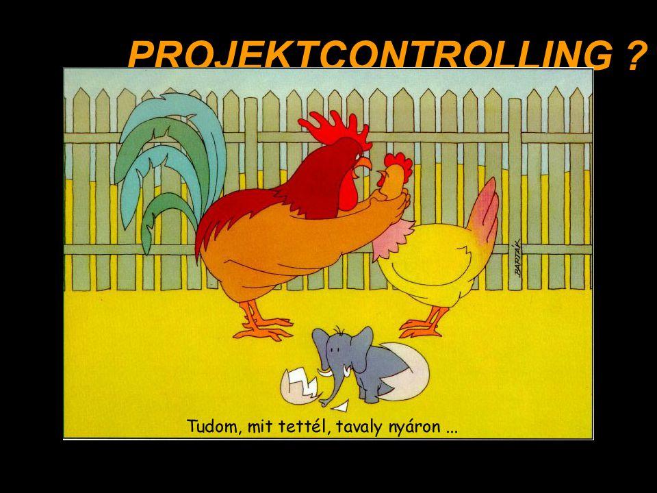 Projekt megvalósítása Projekt irányítás, Projekt controlling