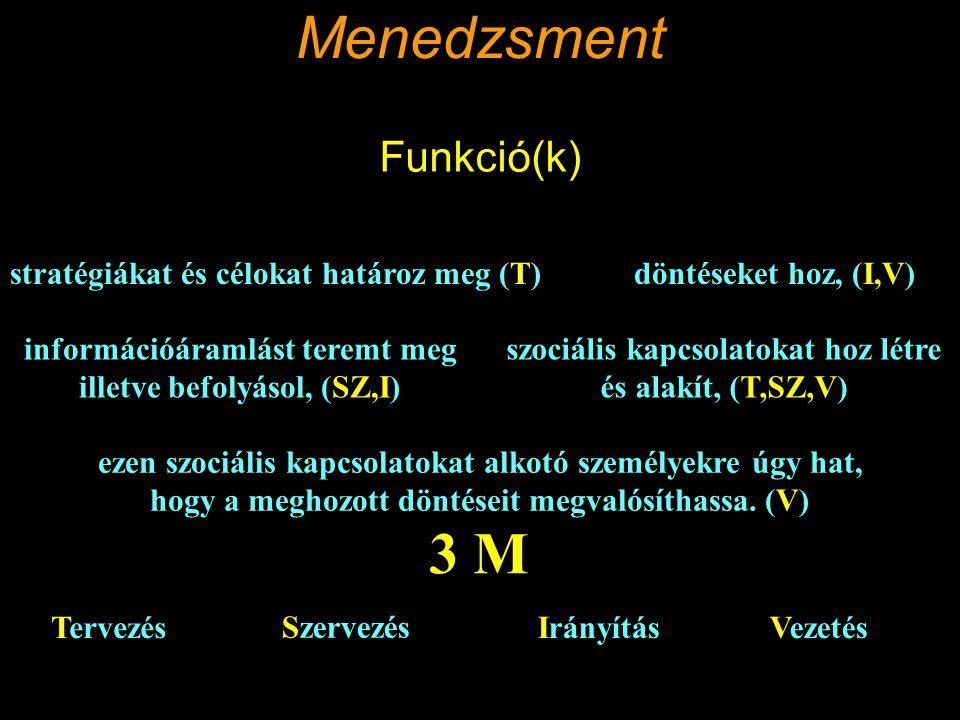 Menedzsment Intézmény szervezeti felelősök