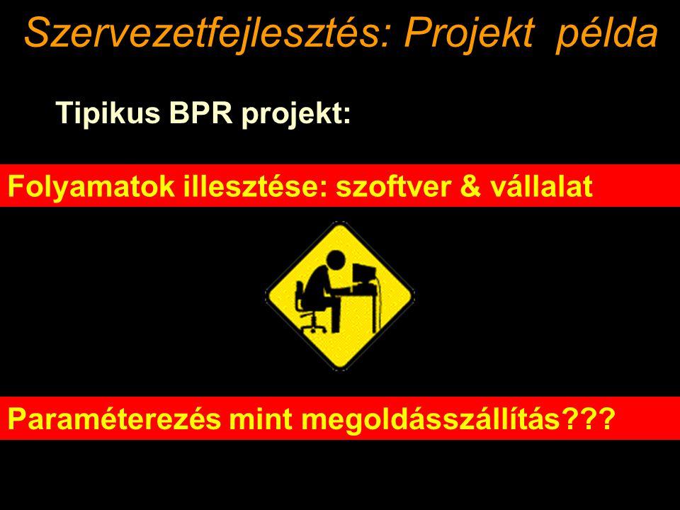 Tipikus BPR projekt: Folyamatok illesztése: szoftver & vállalat Paraméterezés mint megoldásszállítás??.