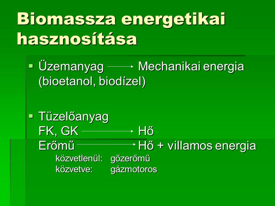 Biomassza előkészítése  Aprítás  Bálázás  Préselés  Alkoholos fermentáció  Pirolízis  Anaerob fermentáció SzilárdFolyékonyGáz