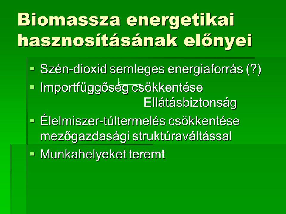 Biomassza jellemzői Összetétel szénhidrátok – illó rész nedvességtartalom hamu (kén) SűrűségHalmazállapot