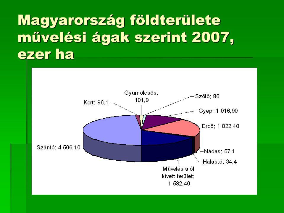 Magyarország cellulózalapú biomassza-forrásai  Mezőgazdasági melléktermékek  Szalma  Kukoricaszár  Napraforgószár  Venyige  Gyümölcsfa nyesedék  …  Erdészeti melléktermékek  Energiaültetvények  Nyár  Fűz  Energiafű  …