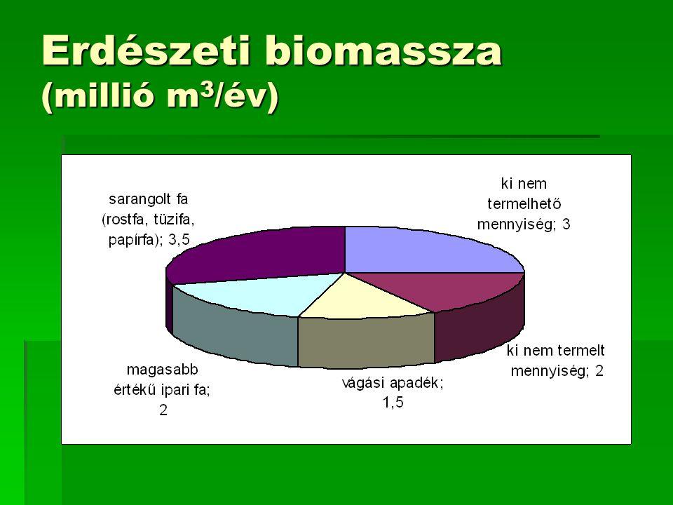 Megvalósult beruházások  Fatüzelésre átállt hőerőművek  Pécsi Erőmű (49 MW) 330 000 t/év  Kazincbarcikai Erőmű (30 MW) 200 000 t/év  Ajkai Erőmű (20 MW) 192 000 t/év  Vegyes tüzelés  Tiszapalkonyai erőmű  Mátrai erőmű  Kisebb beruházások  Távhőtermelés Szigetvár (2 MW) 2 200 t/év  Távhőtermelés Mátészalka (5 MW) 6 000 t/év  Távhőtermelés Papkeszi (5 MW) 1 000 t/év  Távhőtermelés Körmend (5 MW) 6 000 t/év  Távhőtermelés Szombathely (7 MW) 8 000 t/év  Hő- és villamosenergia- termelés Balassagyarmat (2 MW) 12 000 t/év  Hő- és villamosenergia- termelés Szentendre 20 000 t/év