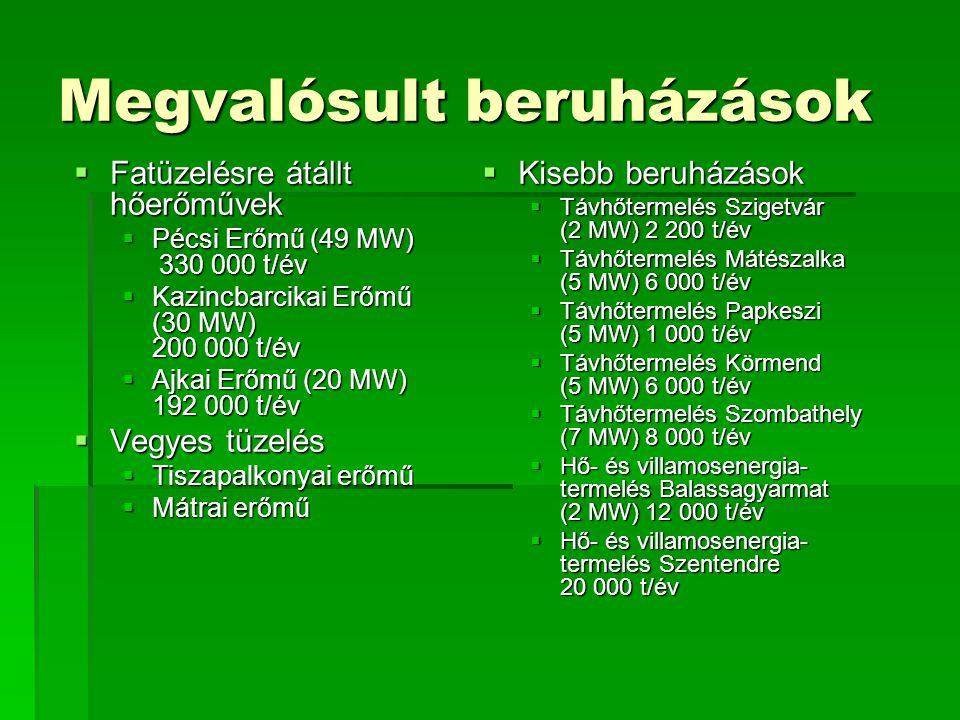 Energiaültetvények  Gyengébb minőségű talajok is hasznosíthatók,  Nagyobb a fajlagos biomassza-termelés mint mezőgazdasági melléktermékeknél,  Kizárólag energiatermelés céljára létesül,  Megakadályozza a talaj erózióját,  Összekapcsolható pl.