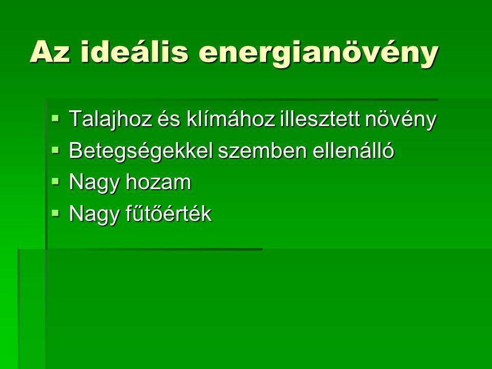 Energiaültetvények Termesztett biomassza - kalkulált termesztés : terület,hahozam,t/ha/év égetésre alkalmas alkalmas tömeg, t/év fűtőérték GJ/t tüzelőhő, GJ Nyár 120025 30 000 12 360 000 FűzFűzFűzFűz90035 31 500 11 346 500 Energiafű 120016 19 200 12 230 400 Összesen3300 80 700 936 900