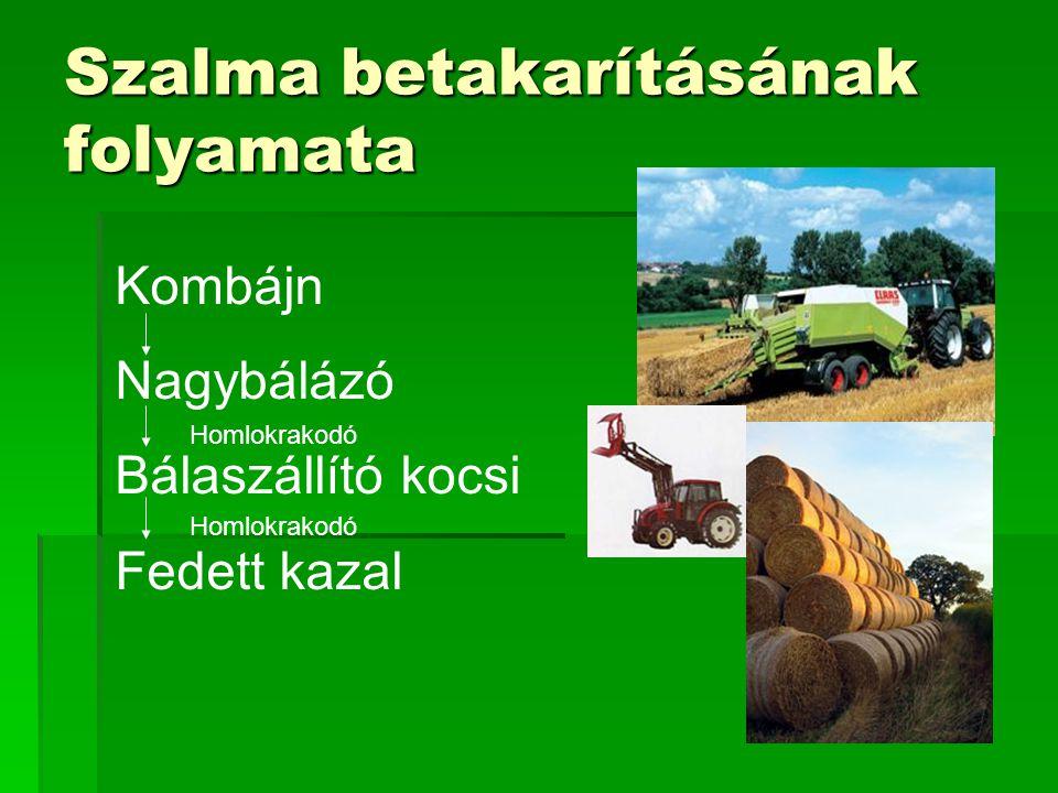 Kukoricaszár  Főtermék: melléktermék = 1:1,5  Használható takarmányozásra  Nagy nedvességtartalom: 40-70%  Gazdaságos szárítás még nem megoldott  Keverhető más tüzelőanyagokkal  Betakarítása jelenlegi technológiákkal problémás: kombájnok megtörik, ill a talajba tapossák a szárat