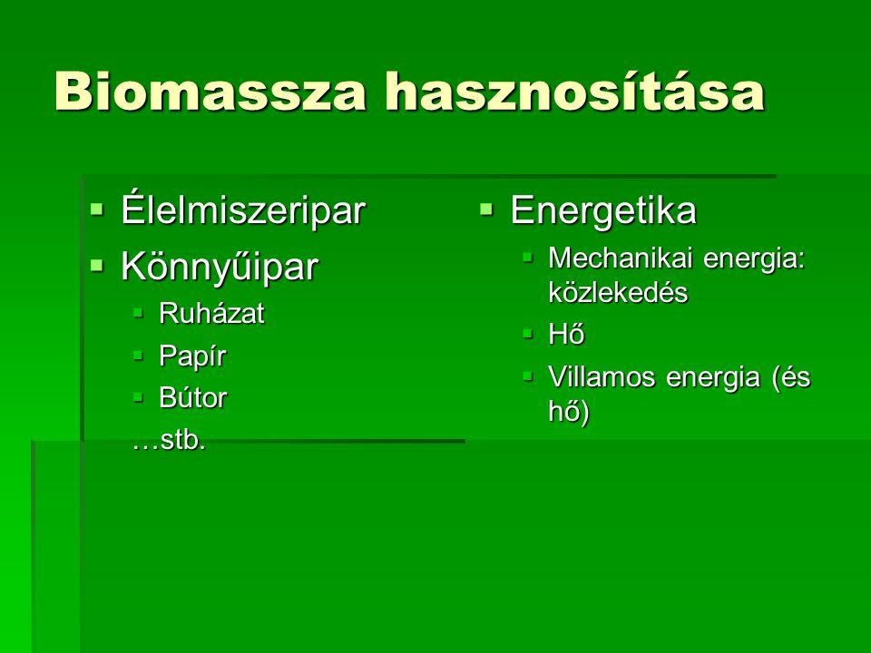 Biomassza energetikai hasznosítása  ÜzemanyagMechanikai energia (bioetanol, biodízel)  Tüzelőanyag FK, GKHő ErőműHő + villamos energia közvetlenül: gőzerőmű közvetve: gázmotoros