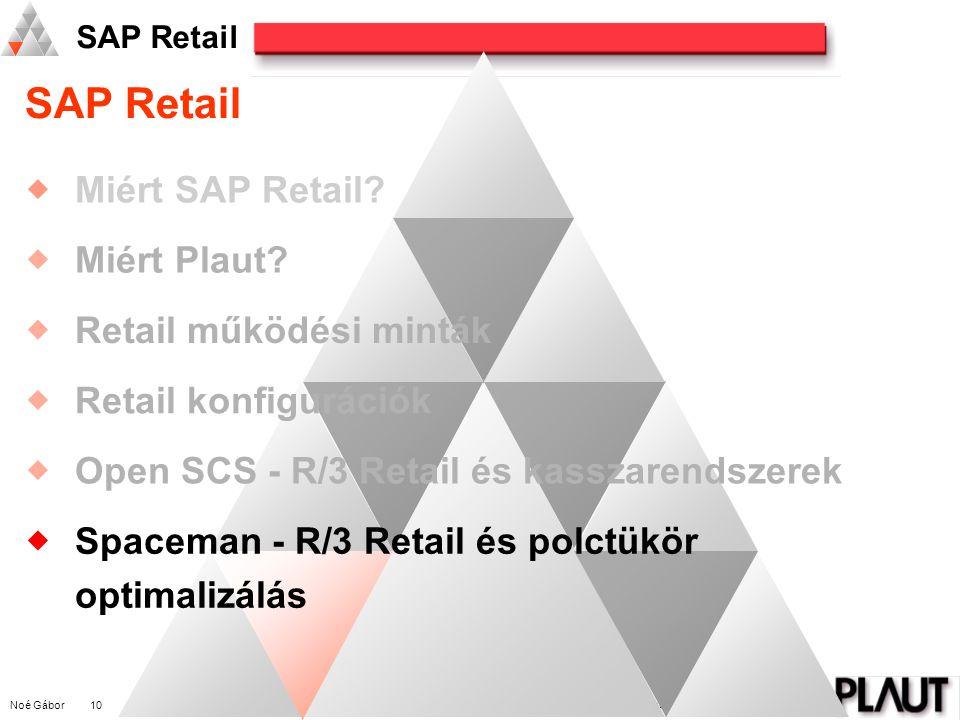 Noé Gábor 10 PLAUT International Management Consulting SAP Retail  Miért SAP Retail.