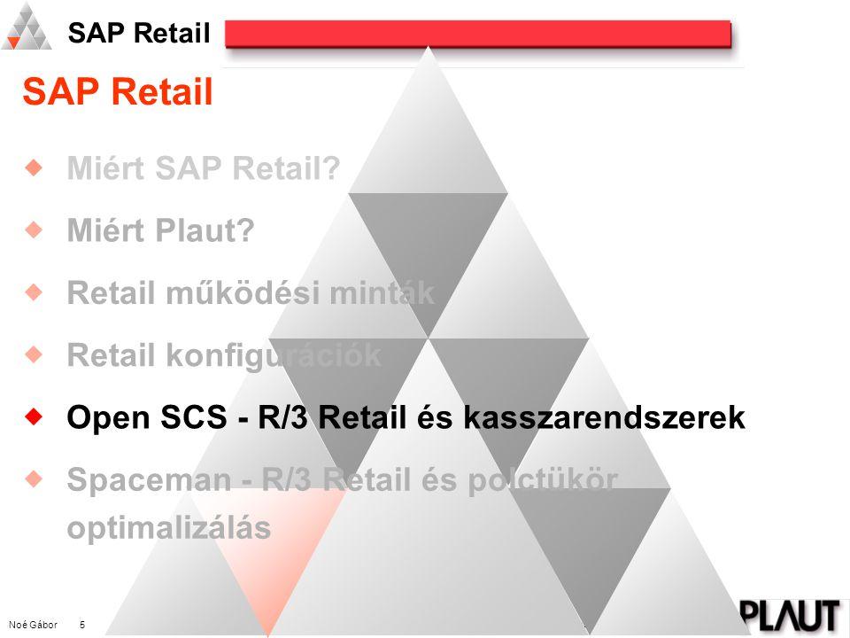 Noé Gábor 5 PLAUT International Management Consulting SAP Retail  Miért SAP Retail.