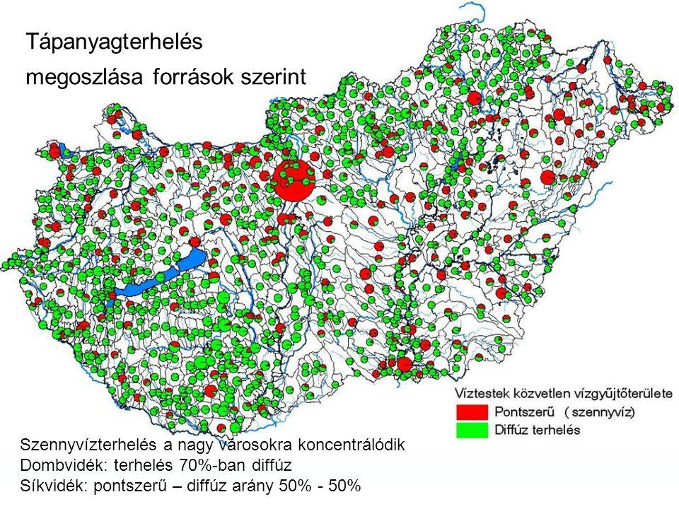 Tápanyagterhelés megoszlása források szerint Szennyvízterhelés a nagy városokra koncentrálódik Dombvidék: terhelés 70%-ban diffúz Síkvidék: pontszerű – diffúz arány 50% - 50%