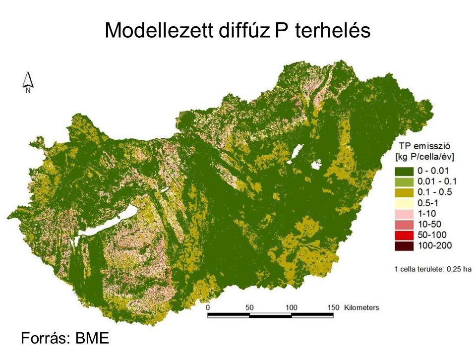Modellezett diffúz P terhelés Forrás: BME