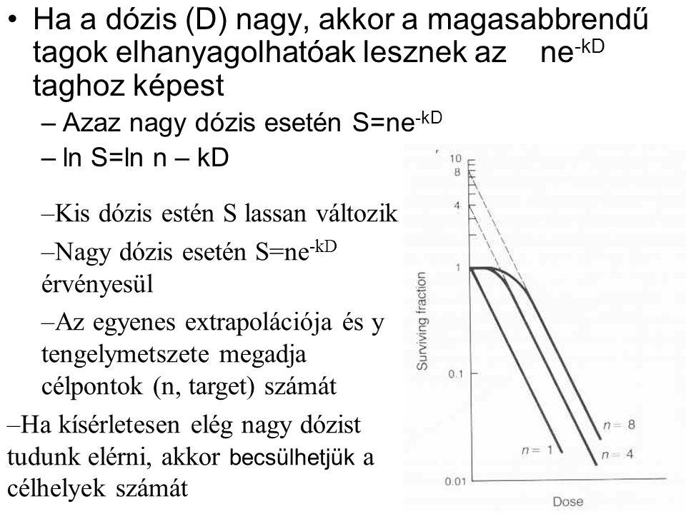 Ha a dózis (D) nagy, akkor a magasabbrendű tagok elhanyagolhatóak lesznek az ne -kD taghoz képest –Azaz nagy dózis esetén S=ne -kD –ln S=ln n – kD –Kis dózis estén S lassan változik –Nagy dózis esetén S=ne -kD érvényesül –Az egyenes extrapolációja és y tengelymetszete megadja célpontok (n, target) számát –Ha kísérletesen elég nagy dózist tudunk elérni, akkor becsülhetjük a célhelyek számát