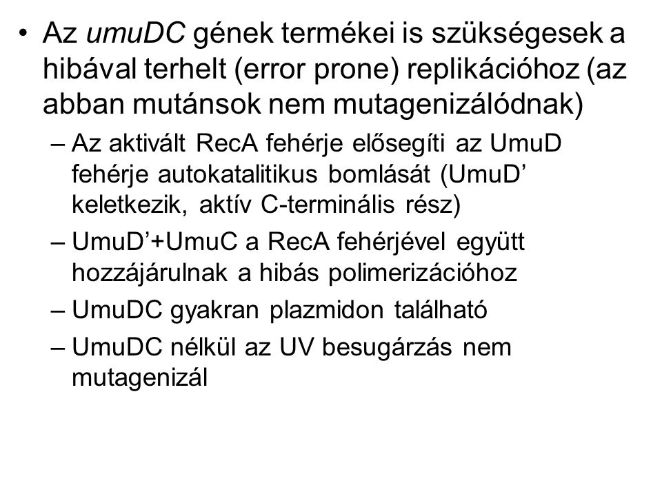 Az umuDC gének termékei is szükségesek a hibával terhelt (error prone) replikációhoz (az abban mutánsok nem mutagenizálódnak) –Az aktivált RecA fehérje elősegíti az UmuD fehérje autokatalitikus bomlását (UmuD' keletkezik, aktív C-terminális rész) –UmuD'+UmuC a RecA fehérjével együtt hozzájárulnak a hibás polimerizációhoz –UmuDC gyakran plazmidon található –UmuDC nélkül az UV besugárzás nem mutagenizál
