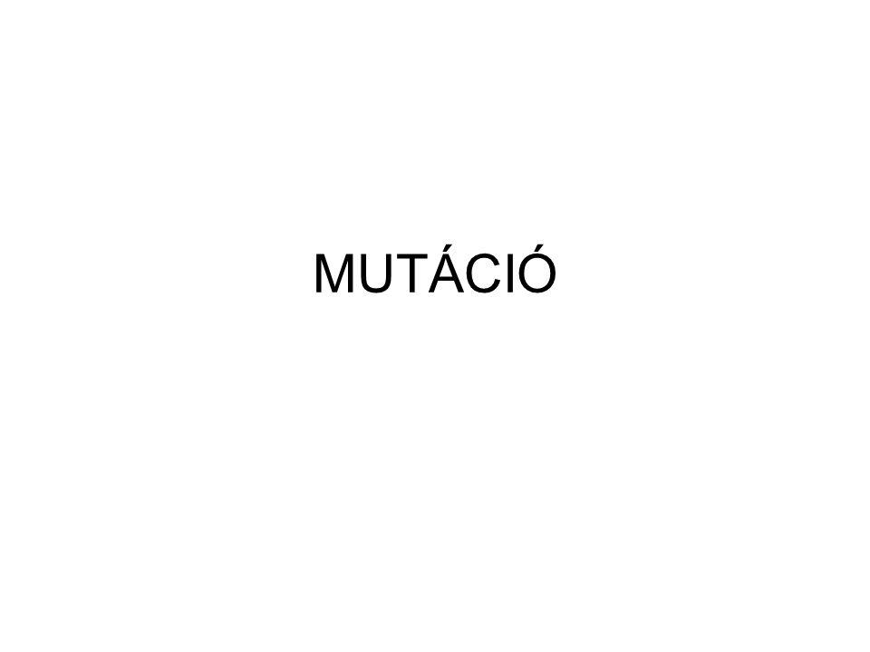 MUTÁCIÓ