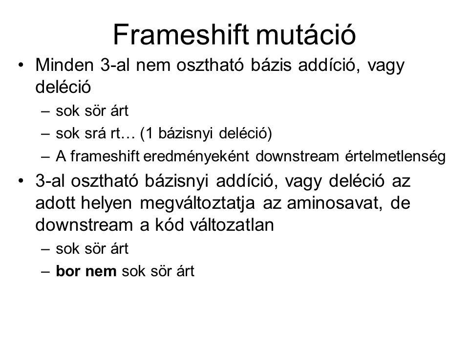 Frameshift mutáció Minden 3-al nem osztható bázis addíció, vagy deléció –sok sör árt –sok srá rt… (1 bázisnyi deléció) –A frameshift eredményeként downstream értelmetlenség 3-al osztható bázisnyi addíció, vagy deléció az adott helyen megváltoztatja az aminosavat, de downstream a kód változatlan –sok sör árt –bor nem sok sör árt