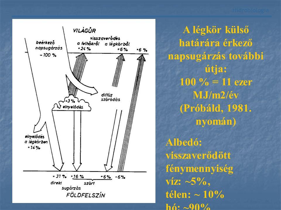 Hidrobiológia Beeső fényVisszavert fény vízfelszín Teljes reflexió A A p B B' b b' V V' Fénytörés: Tárgyak közelebbinek és nagyobbnak látszanak