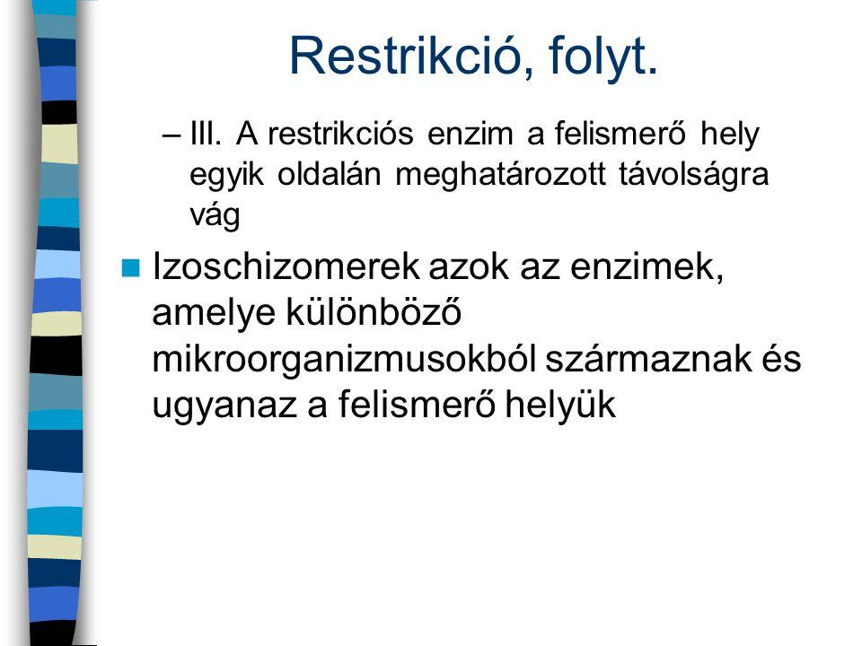 Restrikció, folyt. –III. A restrikciós enzim a felismerő hely egyik oldalán meghatározott távolságra vág Izoschizomerek azok az enzimek, amelye különb