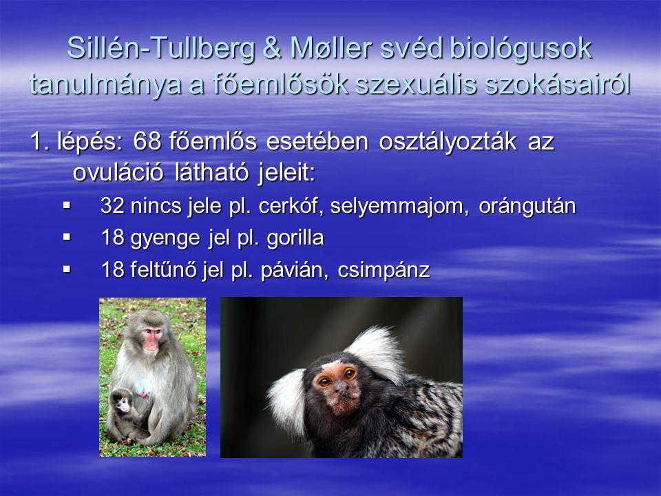 Sillén-Tullberg & Møller svéd biológusok tanulmánya a főemlősök szexuális szokásairól 1. lépés: 68 főemlős esetében osztályozták az ovuláció látható j