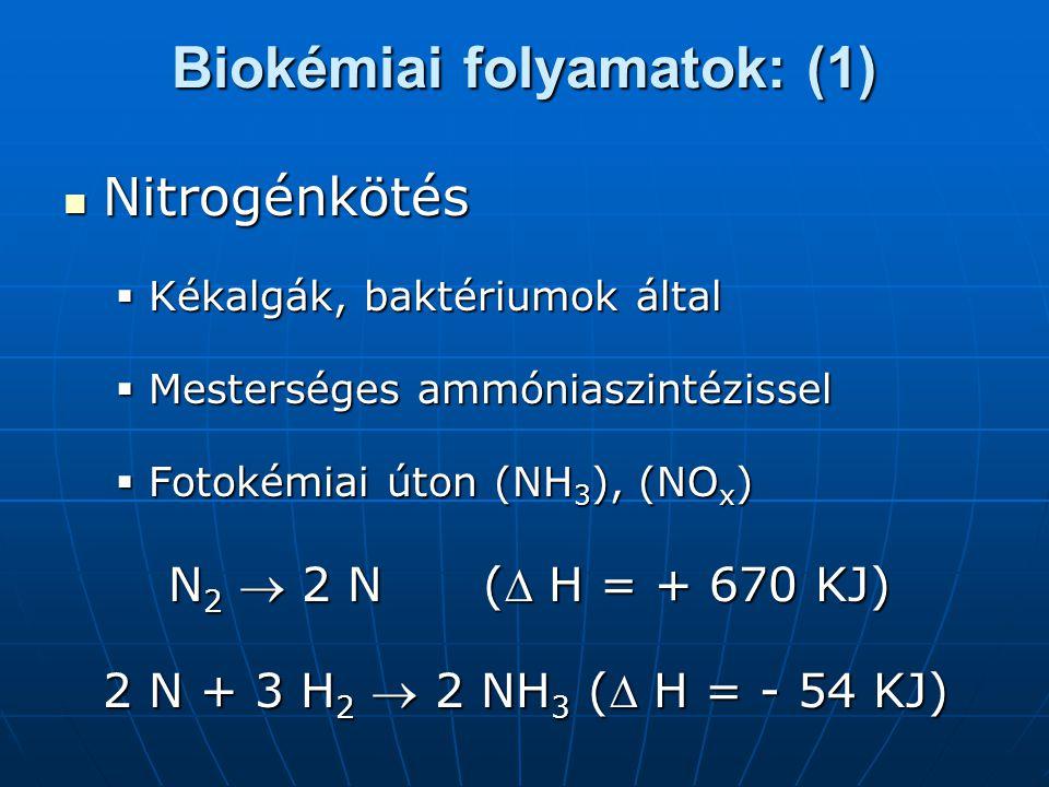 Biokémiai folyamatok: (1) Nitrogénkötés Nitrogénkötés  Kékalgák, baktériumok által  Mesterséges ammóniaszintézissel  Fotokémiai úton (NH 3 ), (NO x