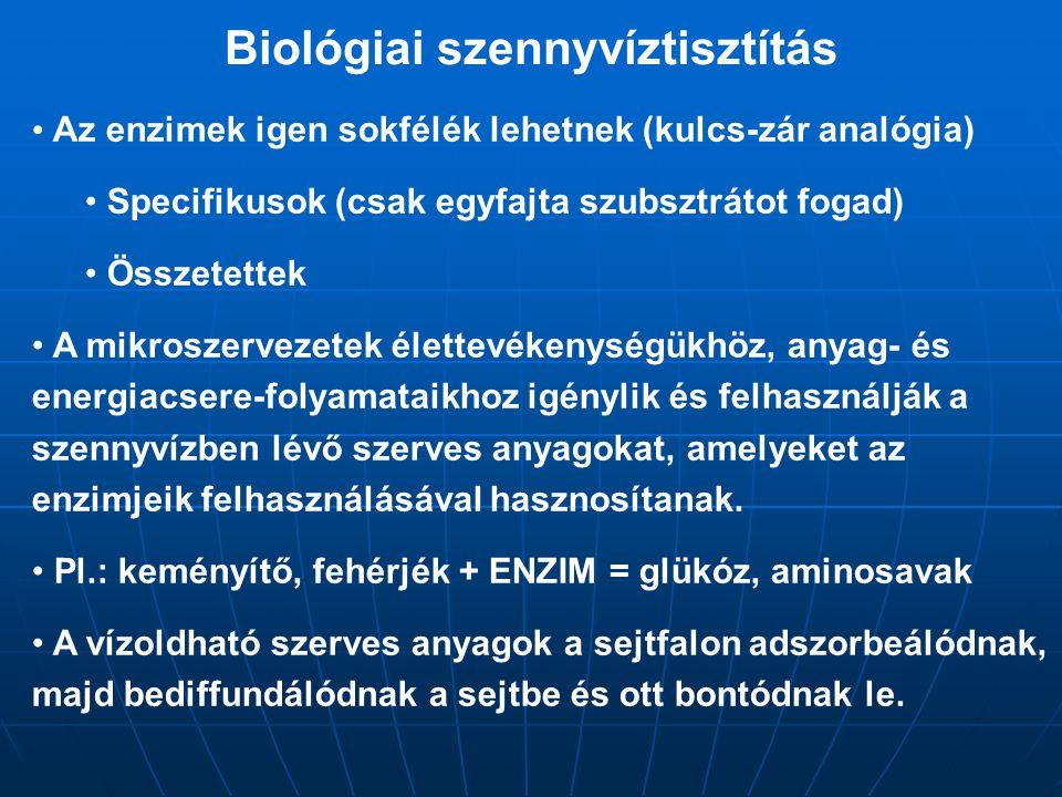 Biológiai szennyvíztisztítás Az enzimek igen sokfélék lehetnek (kulcs-zár analógia) Specifikusok (csak egyfajta szubsztrátot fogad) Összetettek A mikr