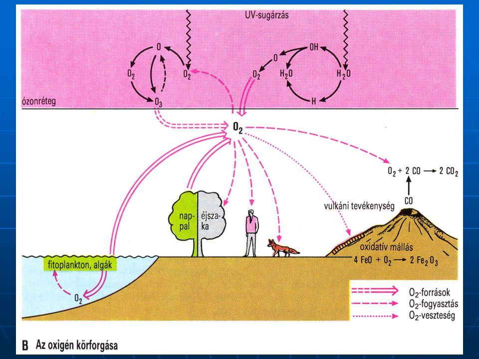 Felszíni vizek oxigénmérlege ΔO2 = (O2 be + O2 f + O2 dbe) – (O2 ki + O2 l + O2 k + O2 dki) Ahol: O2 be : a befolyó vízzel érkező oldott oxigén mennyiség, O2 f : a fotoszintézis során termelt oldott oxigén mennyiség, O2 dbe : az atmoszférából a víztestbe diffundáló oldott oxigén mennyiség, O2 ki : a kifolyó vízzel távozó oldott oxigén mennyiség, O2 l : a légzés során elfogyasztott oldott oxigén mennyiség, O2 k : a kémiai folyamatok során elfogyasztott oldott oxigén mennyiség, O2 dki : a diffúzióval az atmoszférába távozó oldott oxigén mennyiség.