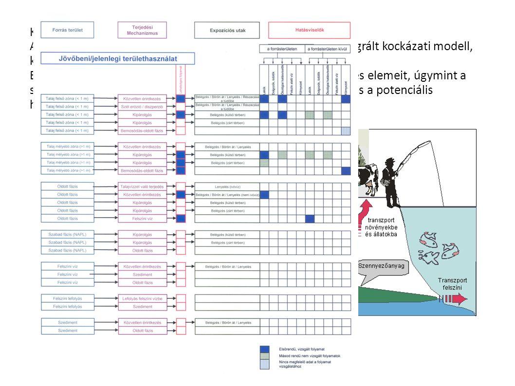 Kockázati modell: A kockázatfelmérés a kockázati modell (más elnevezéssel: integrált kockázati modell, koncepció modell) felállításával indul. Ebben a