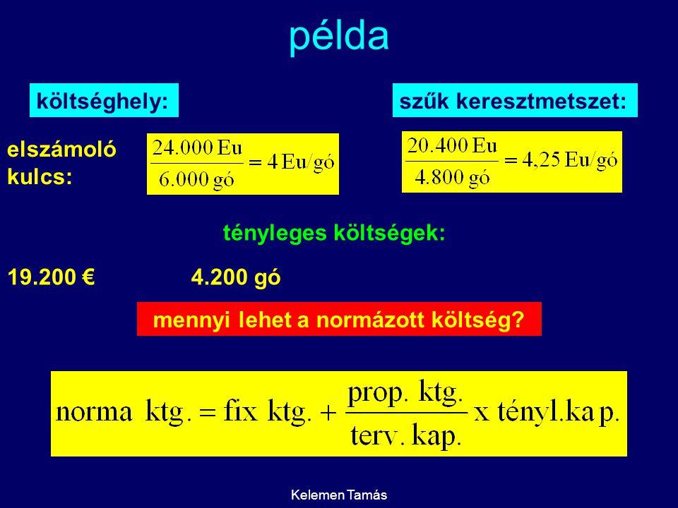 Kelemen Tamás példa költséghely:szűk keresztmetszet: elszámoló kulcs: tényleges költségek: 4.200 gó19.200 € mennyi lehet a normázott költség?