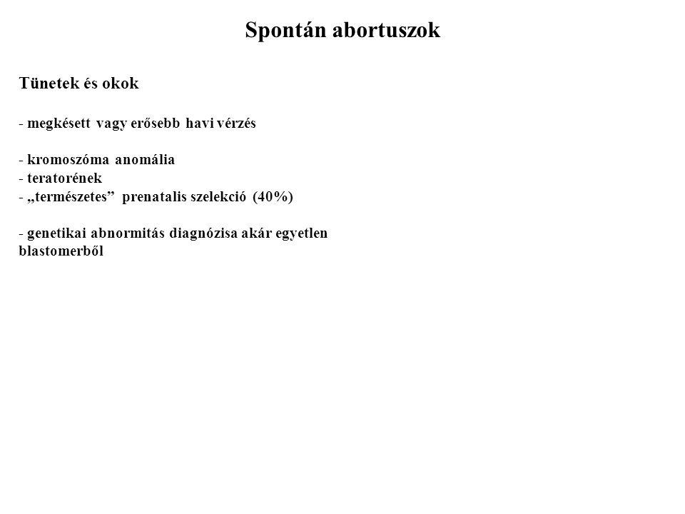 Méhen kívüli terhesség Tünetek, diagnózis, okok - azonos hormonális vátozások  ultrahang
